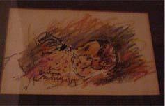 Mostel drawing of Barbara 4